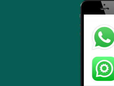 WhatsApp log and WhatsApp Business API logo